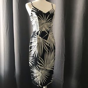 Maggy London Palm Print Fitted Midi Dress
